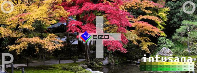 EIZO-Test-Monitor